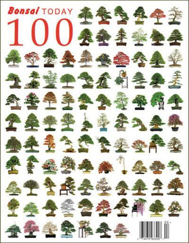 Bonsai Today 100 - Rare Out of Print
