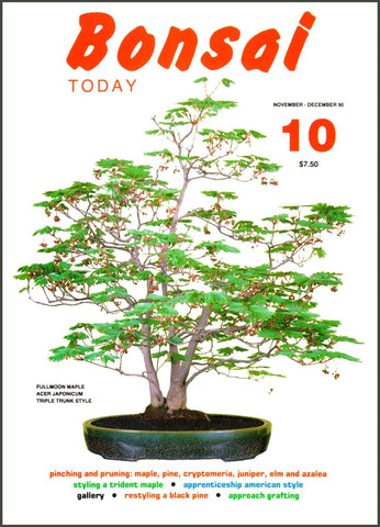 Copy of Bonsai Today 10 - Rare Out of Print