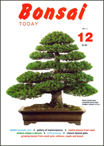 Bonsai Today 12 - Rare Out of Print