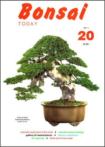 Bonsai Today 20 - Rare Out of Print