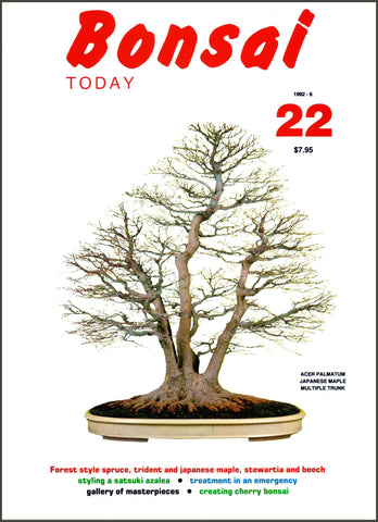 Bonsai Today 22 - Rare Out of Print