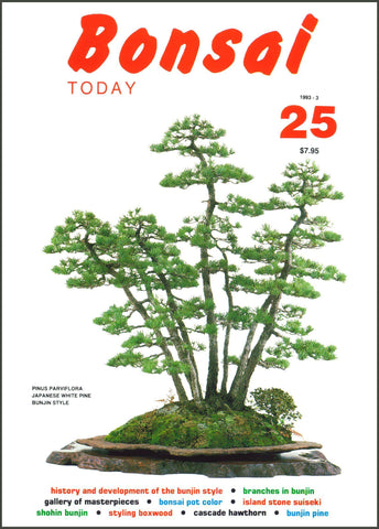 Bonsai Today 25 - Rare Out of Print