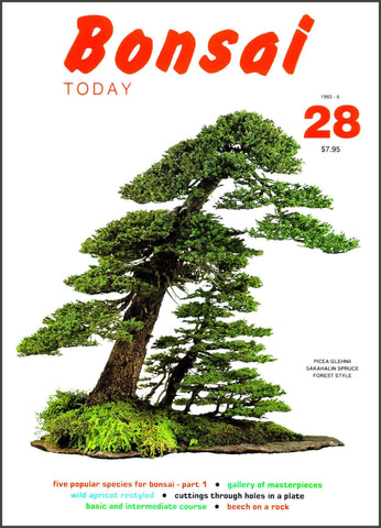 Bonsai Today 28 - Rare Out of Print