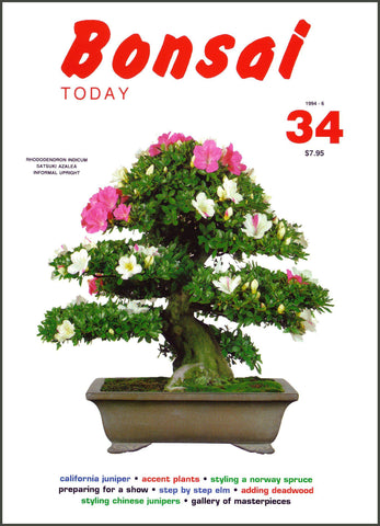 Bonsai Today 34 - Rare Out of Print