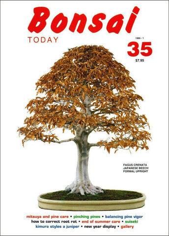 Bonsai Today 35 - Rare Out of Print