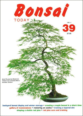 10.00 off - Bonsai Today 39 - Rare Out of Print
