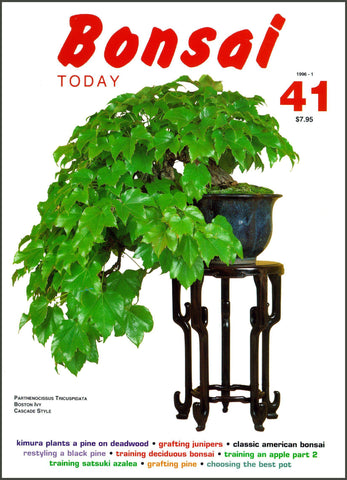 10.00 off - Bonsai Today 41 - Rare Out of Print