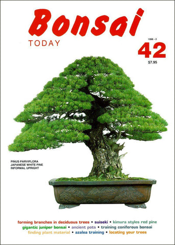 Bonsai Today 42 - Rare Out of Print