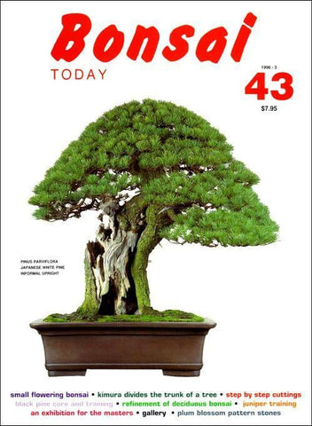 Bonsai Today 43 - Rare Out of Print