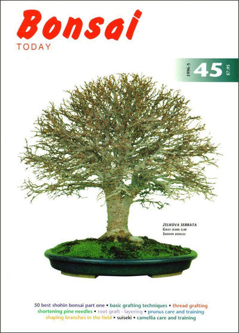 Bonsai Today 45 - Rare Out of Print