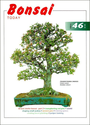 Bonsai Today 46 - Rare Out of Print