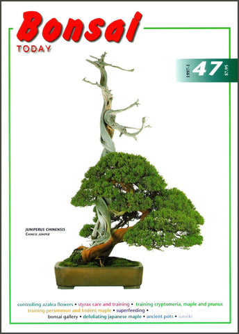 Bonsai Today 47 - Rare Out of Print