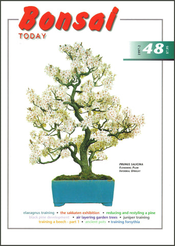 Bonsai Today 48 - Rare Out of Print