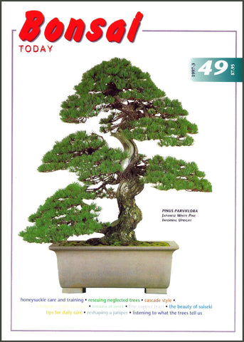 Bonsai Today 49 - Rare Out of Print