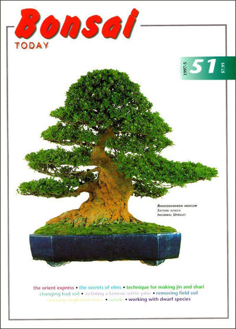 10.00 off - Bonsai Today 51 - Rare Out of Print