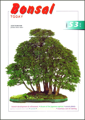Bonsai Today 53 - Rare Out of Print