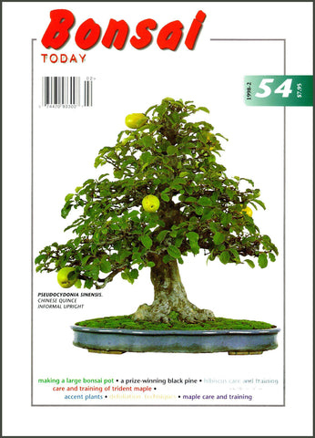 Bonsai Today 54 - Rare Out of Print
