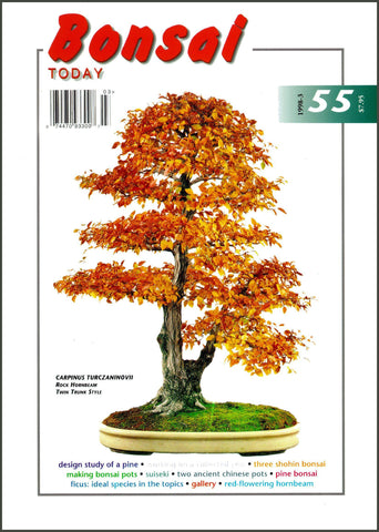 Bonsai Today 55 - Rare Out of Print