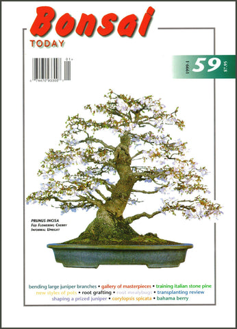 Bonsai Today 59 - Rare Out of Print