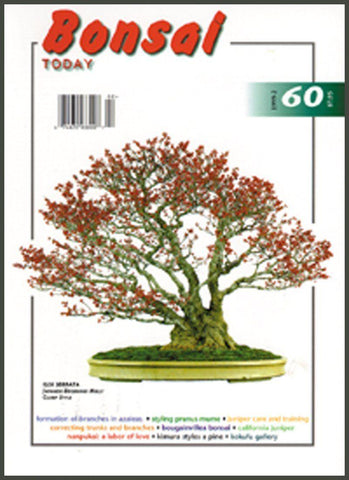 Copy of Bonsai Today 60 - Rare Out of Print