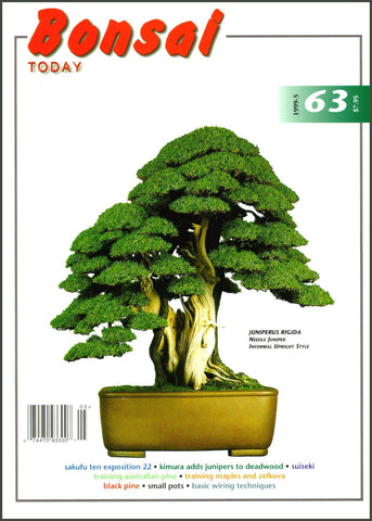 10.00 off - Bonsai Today 63 - Rare Out of Print