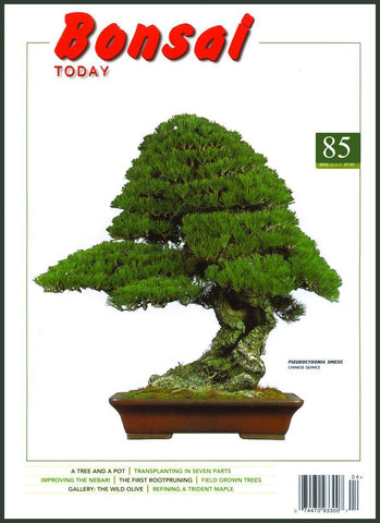 Bonsai Today 85 - Rare Out of Print