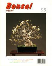 Bonsai Today 95 - Rare Out of Print