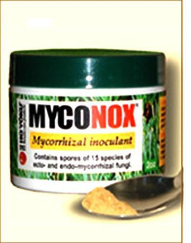 MARKED DOWN 30% - Myconox mycorrhizal fungi