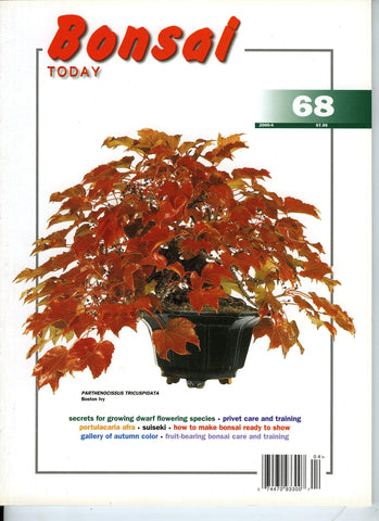 Bonsai Today 68 - Rare Out of Print