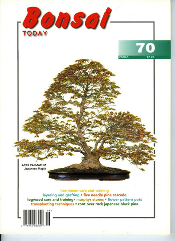 Bonsai Today 70 - Rare Out of Print
