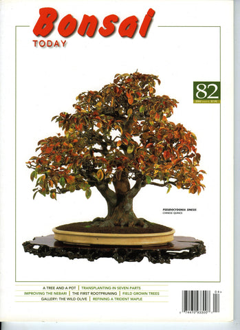 Bonsai Today 82 - Rare Out of Print