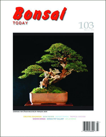 Bonsai Today 103 - Rare Out of Print