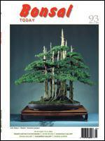 Bonsai Today 93 - Rare Out of Print
