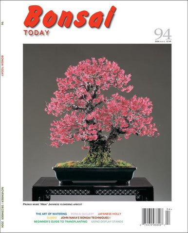 Bonsai Today 94 - Rare Out of Print