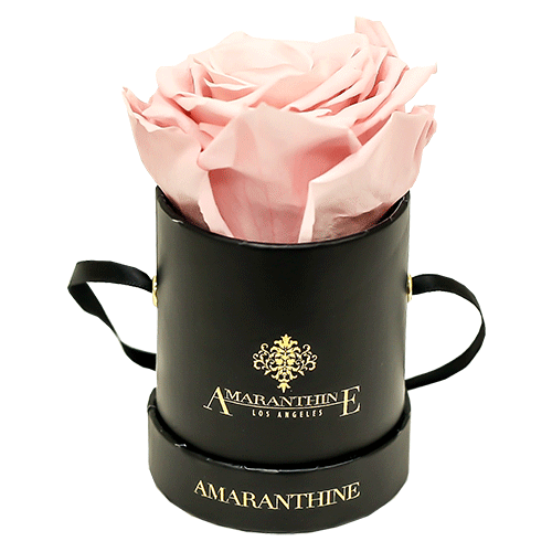Mini Round Collection - Create your own - Amaranthine