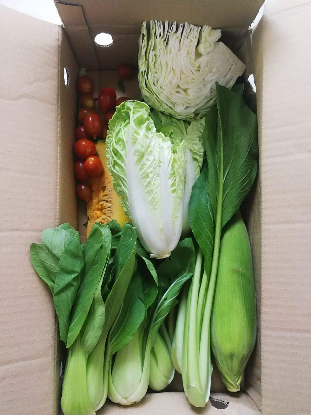 Weekly Organic / Bio-Dynamic Vegetable Box - Farmz