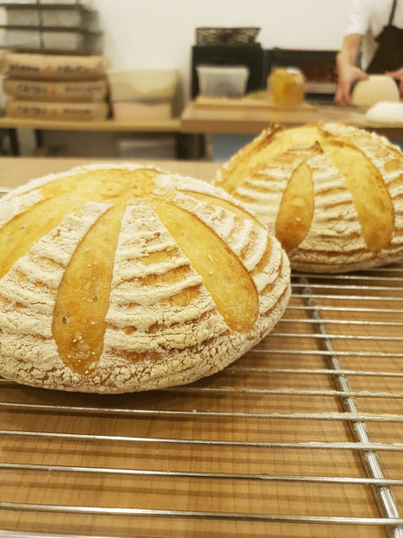 Artisan Sourdough - Farmz