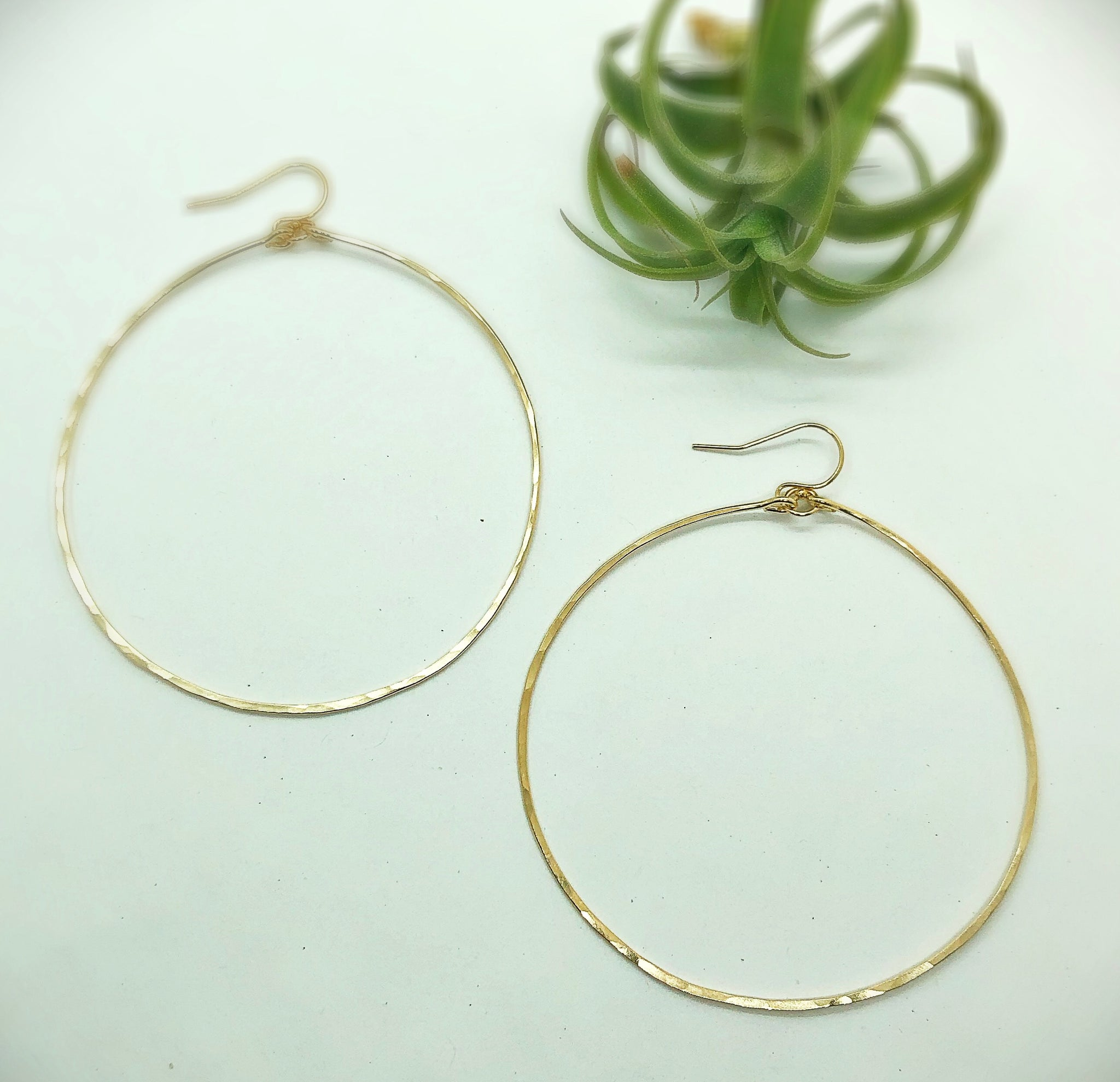 Classic Kahuna Hoop Earrings