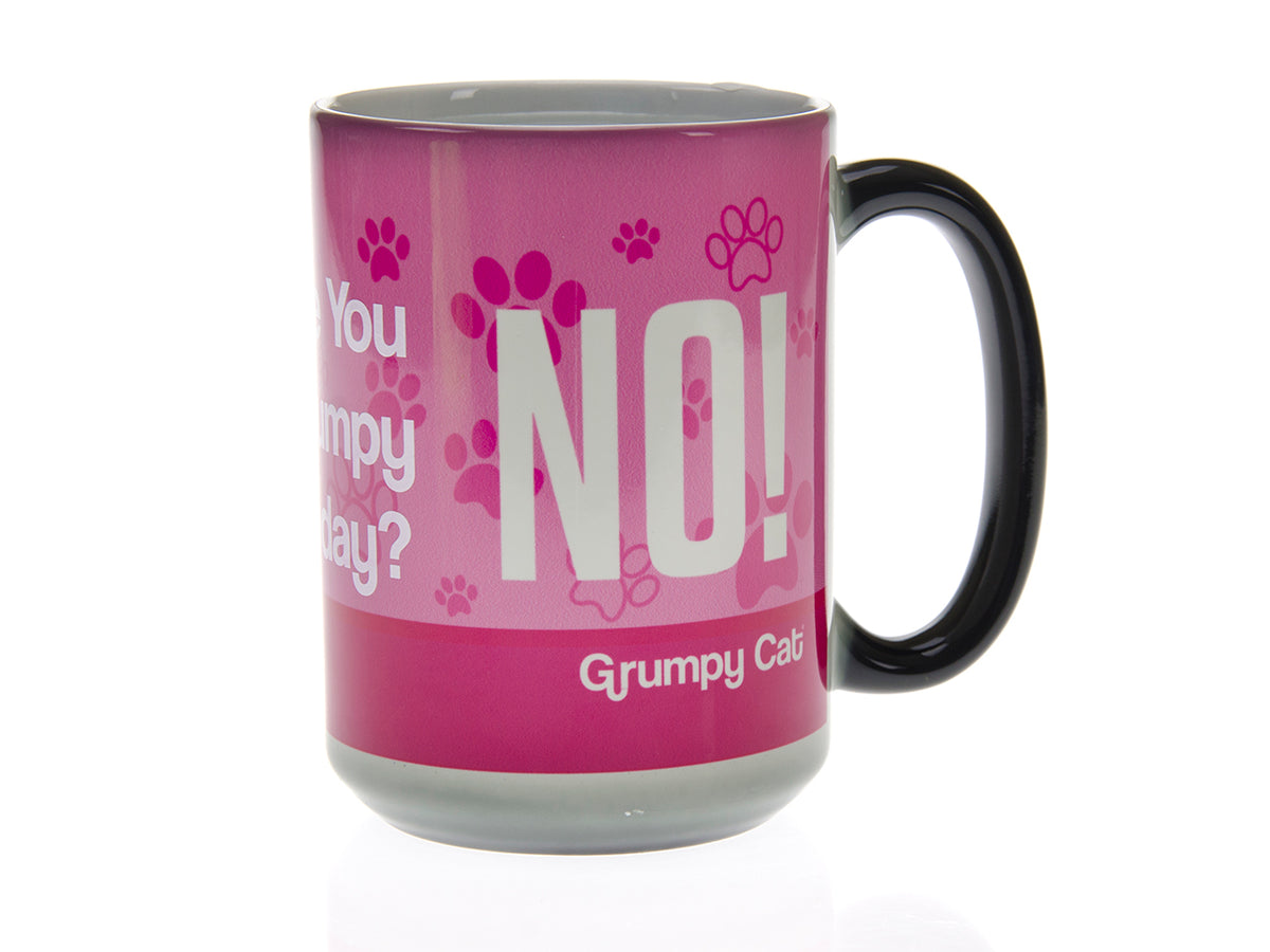 Are You Grumpy Today? Pink Grumpy Cat Magic Mug
