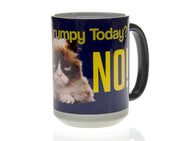 Are You Grumpy Today? Blue Grumpy Cat Magic Mug