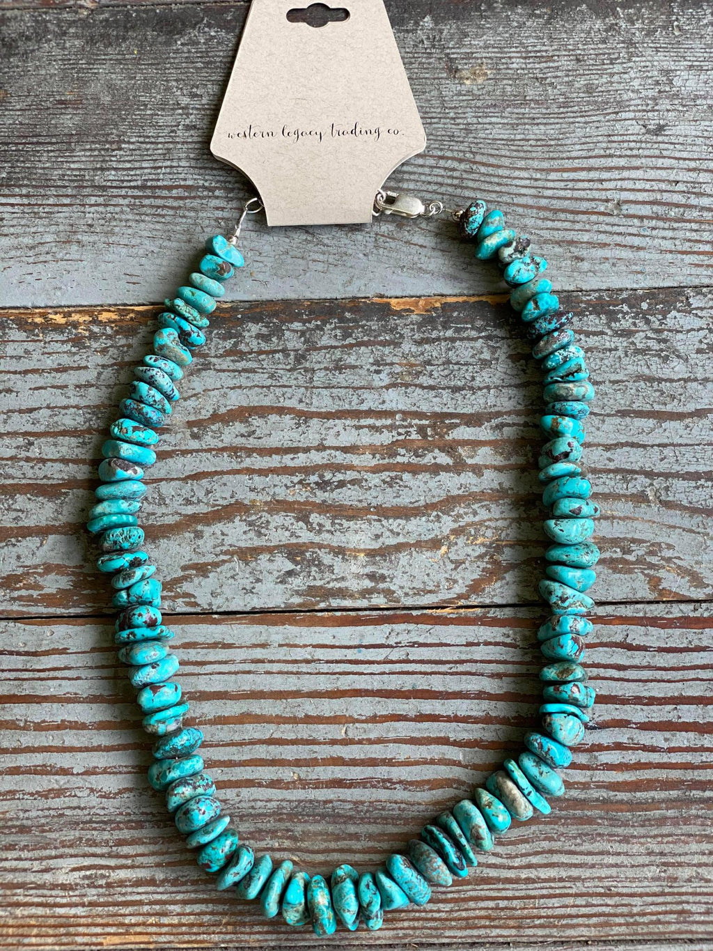Short Chunky Turquoise Necklace with Sterling Hardware