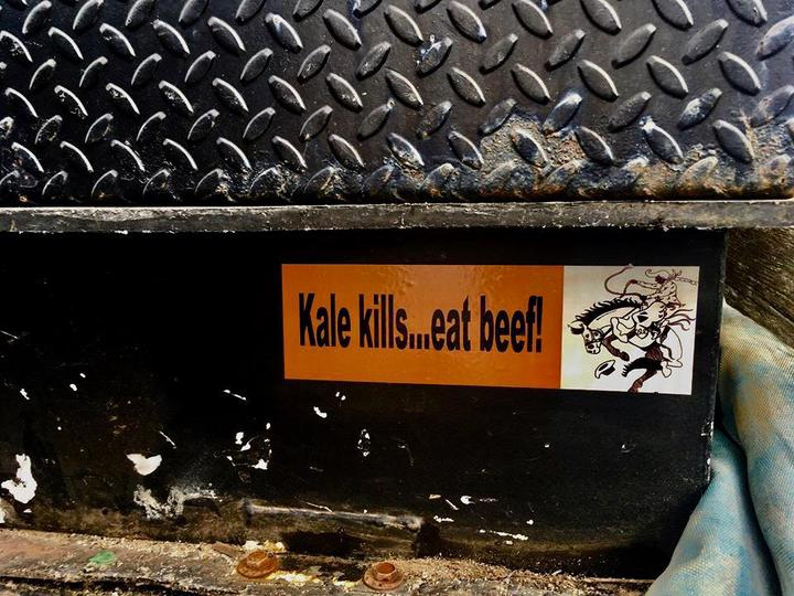 Kale Kills Eat Beef Bumper Sticker
