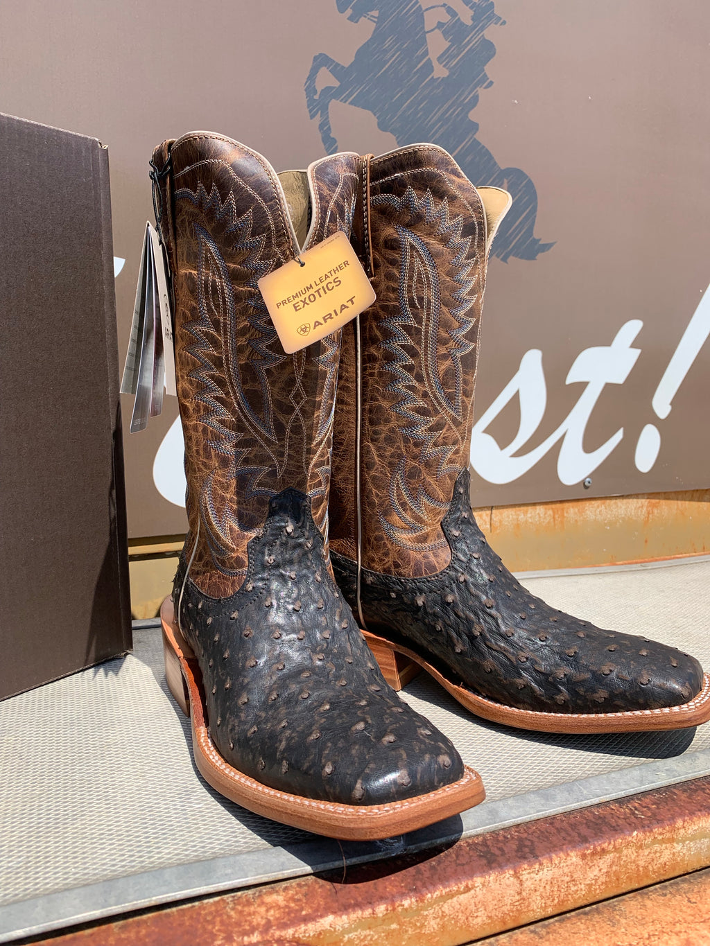 Ariat Distressed Full Quill Ostrich
