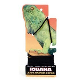 Coastal Pet Products 00130-BLKIGU Iguana Lead and Harness Combo