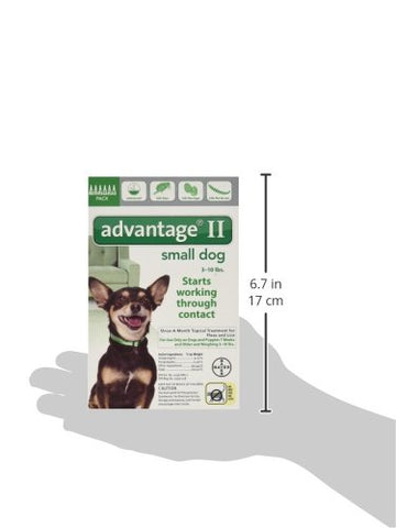 Advantage GREEN-10-6 Flea Control for Dogs and Puppies Under 10 lbs 6 Month Supply