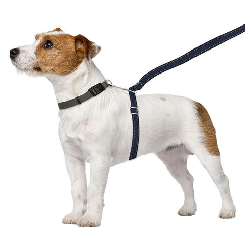 Thundershirt No Pull Leash Small