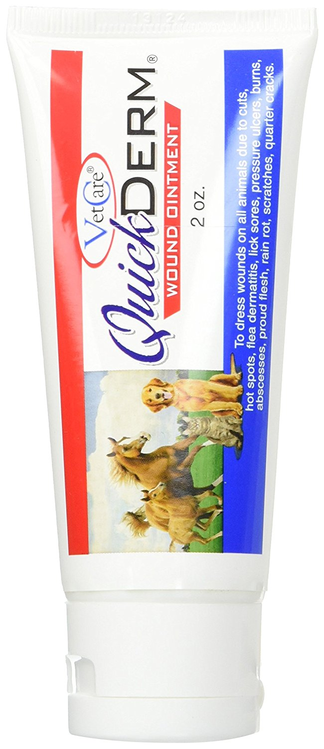 Vetcare 16774 Quickderm Advanced Wound Ointment, 2 Oz.