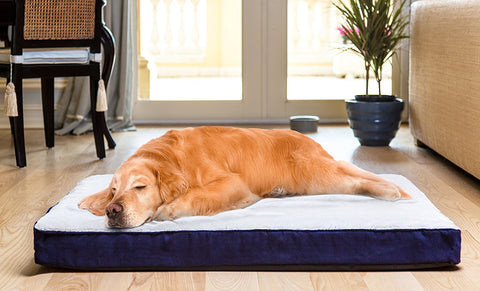 BioBubble BIO-70275516 Deluxe Dog Bed