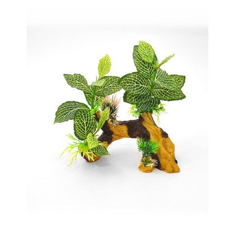 BioBubble BIO-60389900 Decorative Tiger Root