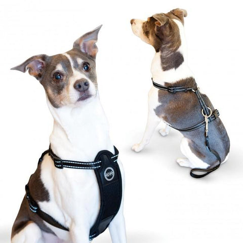 K&H Pet Products KH7833 Travel Safety Pet Harness